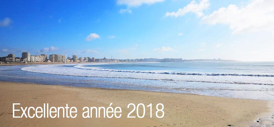 Meilleurs vœux 2018 des Sables d'Olonne